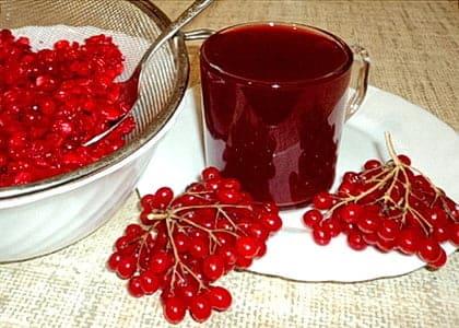 Сок и ягоды калины, приготовить калину с сахаром на зиму не сложно