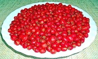 Тарелка боярышника. Узнайте рецепты, что можно сделать из ягод боярышника на зиму в домашних условиях