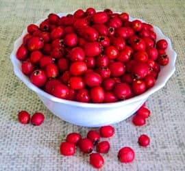 Тарелка с ягодами боярышника