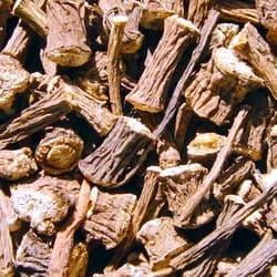 Высушенные корни лопуха