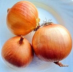 Три луковицы. В луке репчатом содержится множество полезных веществ.