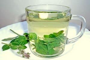 Чашка чая из свежих листьев, на мужскую потенцию мелисса отрицательно не влияет